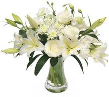 Enestående i hvitt - floristens valg