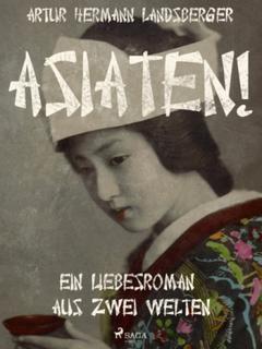 Asiaten! Ein Liebesroman aus zwei Welten (E-bog)