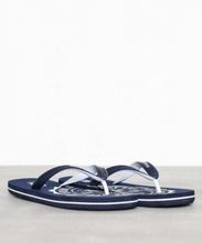 Polo Ralph Lauren Whtlbury Sandals Sandaler & flip flops navy/white