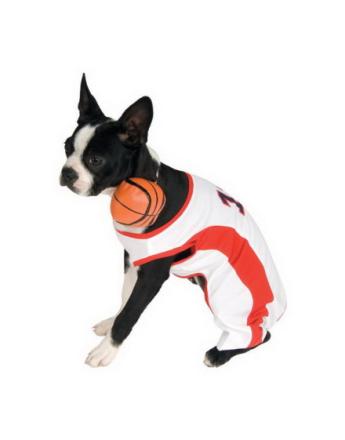 Basketspelare Hundkostym
