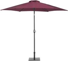 Aurinkovarjo burgundi VARESE