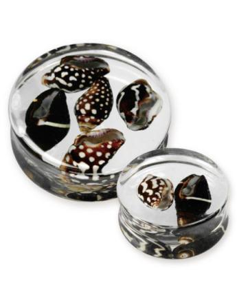 Sea Shells - Gjennomsiktig Piercing Plugg