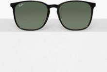 Ray Ban 0RB4387 Solglasögon Svart