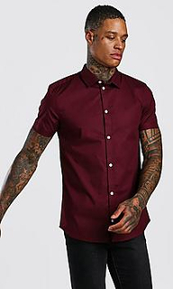 Muscle Fit Short Sleeve Shirt