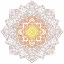 HIP Badlakan 2068-H Jayden 160 cm blomma flerfärgad