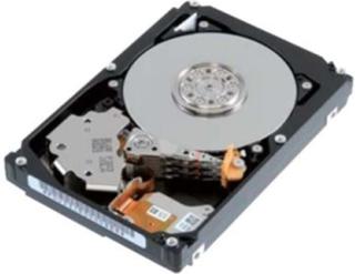AL13SXB300N - harddisk - 300 GB - SAS 6Gb/s Harddisk - 300 GB - 2.5