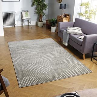 Rugs Direct Online Ltd CAVALLO 186 J grå rektangel mattor Plain/näs...
