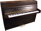 Yamaha b1 OPDW Upright Piano