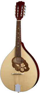 Thomann Europe Mandola M1088
