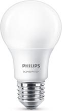 Philips SceneSwitch 3-i-1 LED 8W (60W) E27 dimbar - Matt, Warmglow