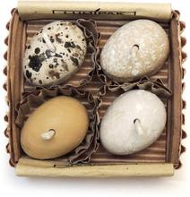 Miljövänlig Ljusbringare, 4-pack, Egg