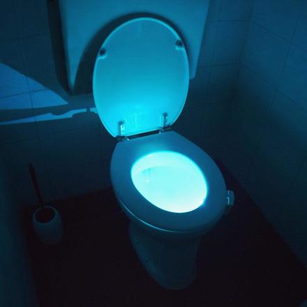LED Belysning for toalett