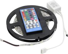 LED Strip Digital RGB+W 5m IP20 IR