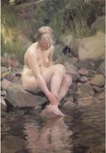 Steve Art Gallery Dagmar,Anders Zorn,60x40cm