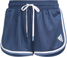 adidas Club Shorts Damen XS