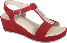 Scholl Damsandal Catelyn Red
