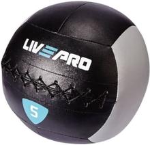 Warrior Wall Ball