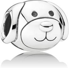 Pandora Vänlig hund