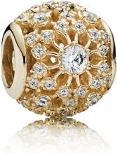 Pandora Vacker Stjärna Guld