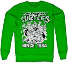 TMNT Distressed Since 1984 Sweatshirt, Sweatshirt
