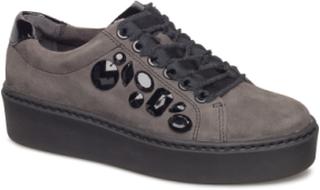 Woms Lace-Up Sneakers Sko Grå TAMARIS