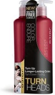 Joico Turn Heads Color Endure Shampoo & Conditioner 500ml