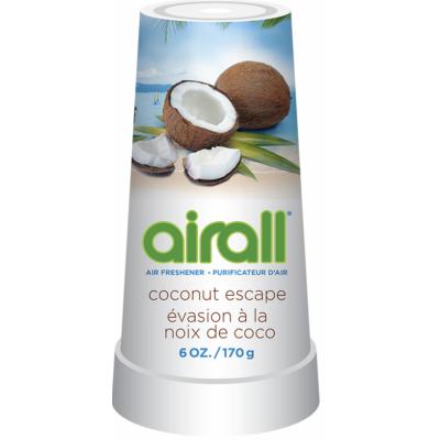 Airall Raumduft Kokosnuss 170 g