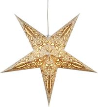 Julstjärna BLAZE Guld