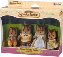 Walnut Squirrel- Family