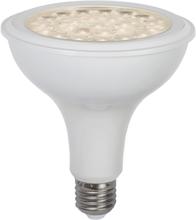 Star Trading LED-Lampa E27 Par38 Plant Light Varmvit