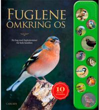 Fuglene omkring os - Papbog