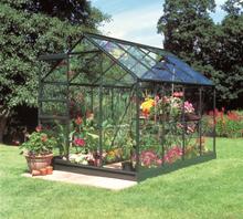 Halls Växthus Popular 5 kvm, Grön, Glas