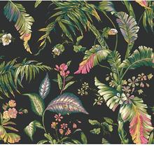 Ashford Tropics - AT7093