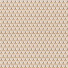 CHLOÉ PINK/GOLD - 229-24