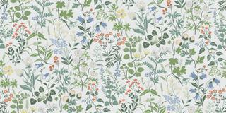 Flora - 5475