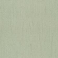CÉLINE LIGHTGREEN - 230-38