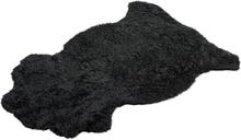 Skandilock Fäll Rug Aussie-Black