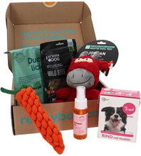 Presentbox Hund - 50% rabatt