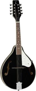 Tanglewood TWMTBKP mandolin sort