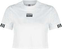 Adidas - Tee Cropped -T-skjorte - hvit