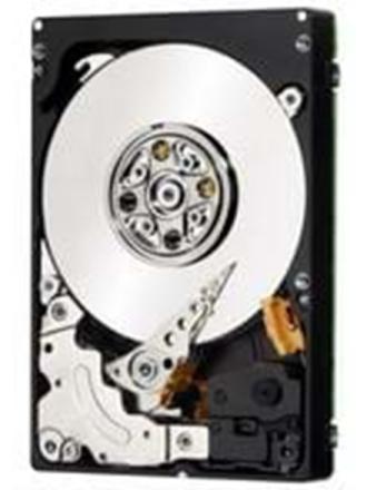 Second Hard Disk Drive Harddisk - 320 GB - 7200 rpm - SATA-300 - cache