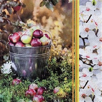 Frokostserviet, 3-lags, 1/4 fold, 33x33cm, flerfarvet, 100% nyfiber, apple season
