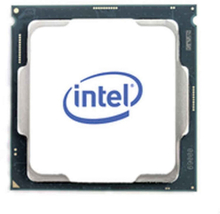 Processor Intel BX8070110105
