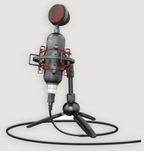 Trust Mikrofon GXT 244 Buzz Streaming microph Grå