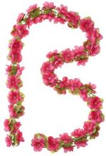Basil Decoration Flower - Garland Fuchsia