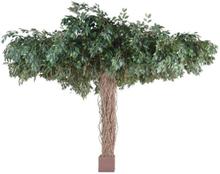 Stort kunstigt Ficus træ H320 x Ø450 cm