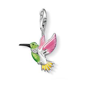 Färgglad kolibri