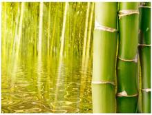 Fototapet - Exotisk atmosfär med bambu - 200x154 cm