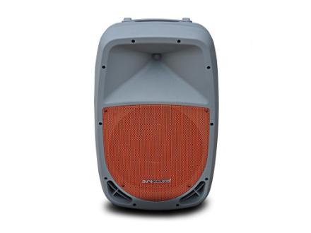Pure Acoustics PMW1212 Grey Portable BT