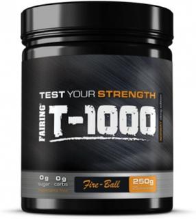 Fairing T-1000 - Testobooster